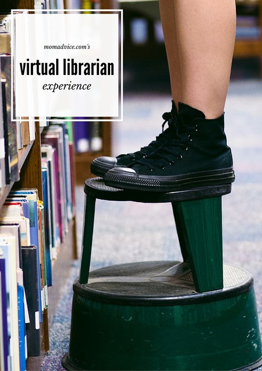 The Virtual Librarian Experience: Give Me a Good Mystery